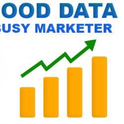 good data busy marketer